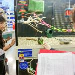 Anatomy Project at PetSmart